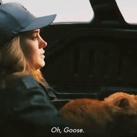 I feel bad for the people who left Captain Marvel after the first post credit scene.