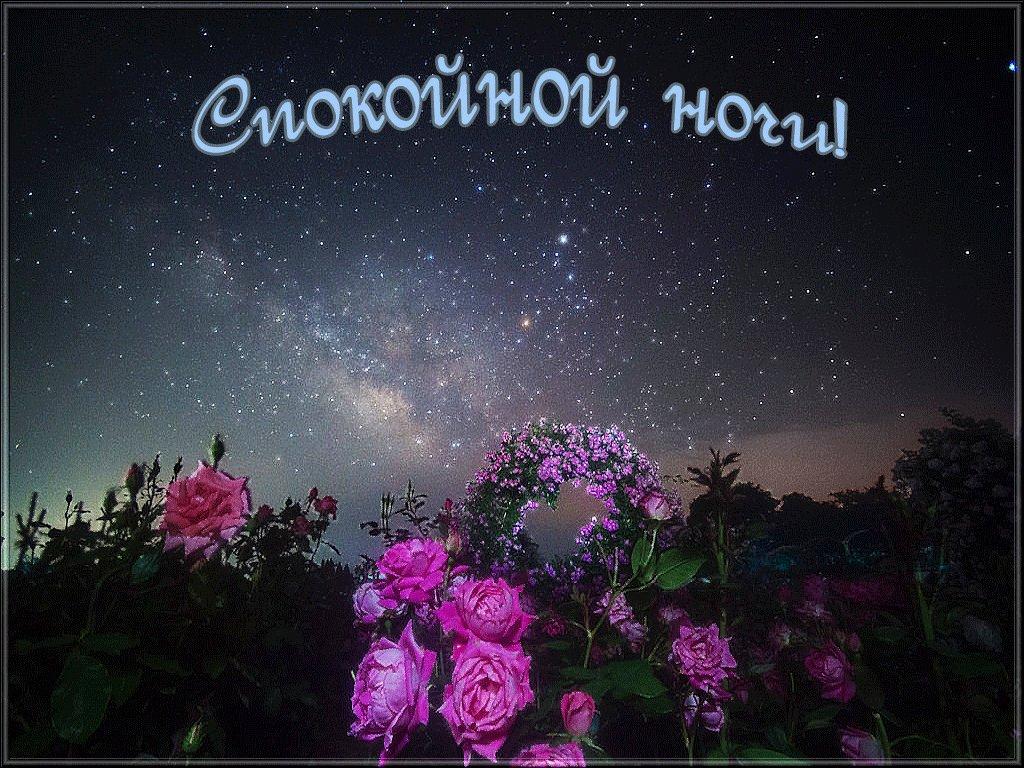 Днем учителя, красочные открытки доброй ночи
