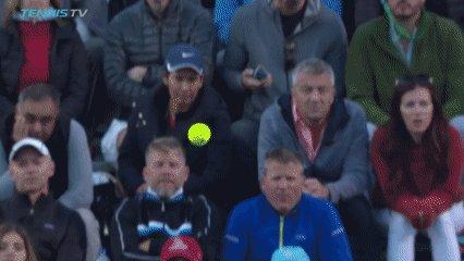 doublefault28's photo on Djokovic