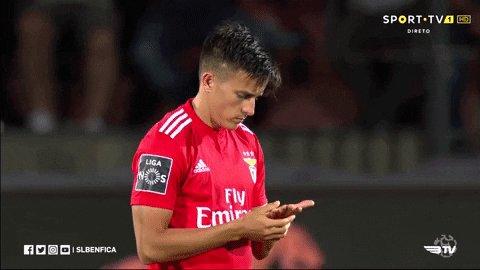SL Benfica's photo on #UELdraw
