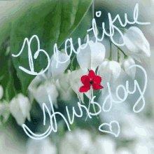Happy #Thursday!  #Blessings for a beautiful day!  ✨🌿🌷🦋🌷🌿✨  #JoyTrain #Joy #Love #Kindness #Quote #MentalHealth #Mindfulness #GoldenHearts #IAM #ChooseLove #ThursdayMorning #ThursdayThoughts #ThursdayMotivation #ThankfulThursday RT @SweeetMamaSue