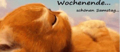 Trinchen's photo on Start ins Wochenende