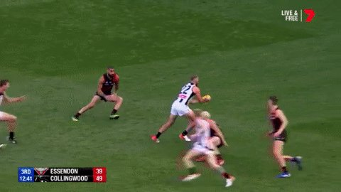 Pure class from Steele Sidebottom!  #AFLDonsPies