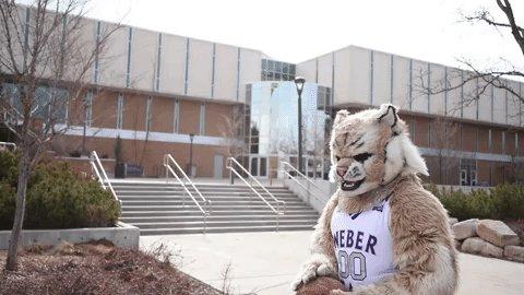 Weber State University's photo on #ripcity