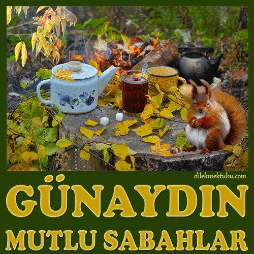 Mehmet babacan ömrüm gülüm's photo on #salı