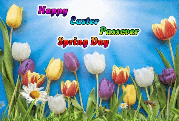 (via McSpocky:https://twitter.com/mcspocky) RT mcspocky: Best wishes to you this morning no matter what you are celebrating! #SundayMorning Easter Passover  Springtime #SundayService