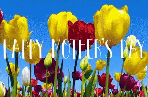Happy Mother's Day to all of the moms and mother figures in @JCPSKY! Enjoy your day! #WeAreJCPS