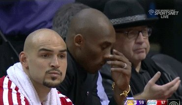 Lakers fans right now