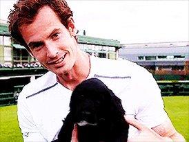 Andy Murray fait Chevalier le jour de l anniversaire de !!! Happy birthday Queen