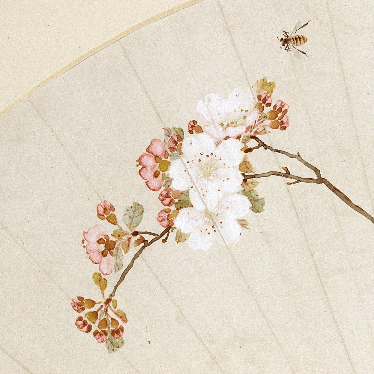 Today is the first #WorldBeeDay! 🐝 This little bee is buzzing around a cherry blossom on a 19th-century Chinese fan by artist Chen Fen