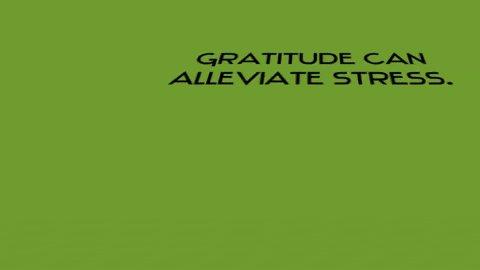 @BIMbelieveinME @MOvMprod @JoFreitas12 @Matthew21344103 @msmithobx @sinannofilmpro @miguelmellinger @RockFightFilms @IamBalashan1980 @JoJo_Andr @Moviesontheway @skipbolden @LeilaKotori #Gratitude to the infinity and beyond!!! I 💙 BIM. #supportindiefilm 🎬 #SupportWomen #WednesdayWisdom Today Im grateful for: 1) Being healthy 🙏 2) Arts 💘 3) @BIMbelieveinME 💙