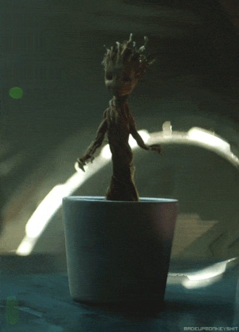 Happy birthday, Vin Diesel! Today, we are Groot.