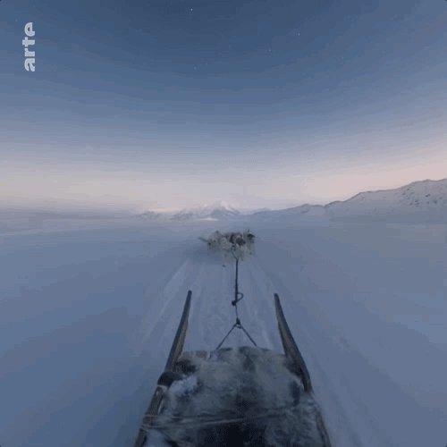 Avec -22.7°C, @moleculemusic vous mène en traineau. Une expérience polaire à découvrir ici 👉 http://arte.tv/-22-7