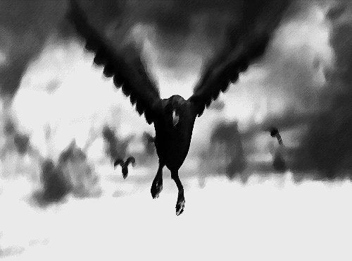 Shadow moons Pale reflections Totem spirits rise Into the night So dark the flight Vanish on the waning light I soar beyond the realm of man Beyond what's human Beyond Gods hand I leave this world Beyond the sun Goodbye everyone #vss365 #vss365a