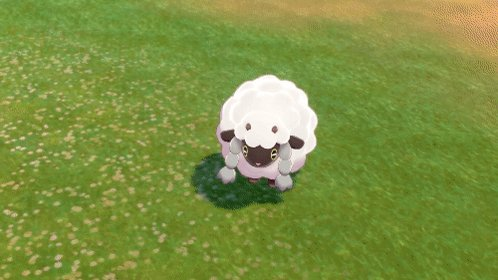 Wooloo is still cheering for you. #PokemonSwordShield