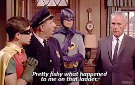 @rriverstone's photo on Adam West