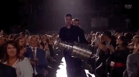 hey, the blues won the stanley cup.