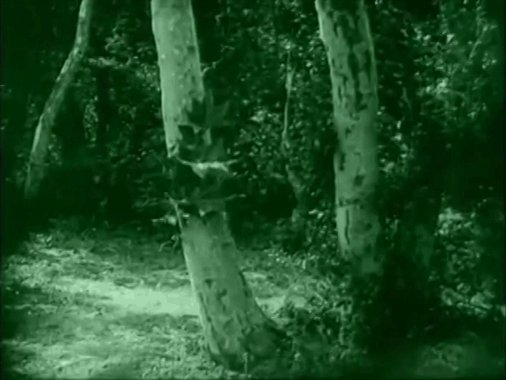 nudity-in-silent-films