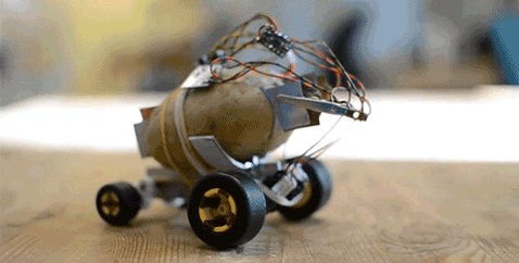 Image result for Guy Builds a Self-Powered Driving Potato That Turns Out to Be a Better Pet Than a Cat