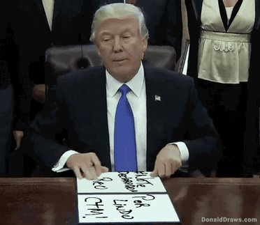 Faltaba el Donald #NoTeDeclararonReoporL...