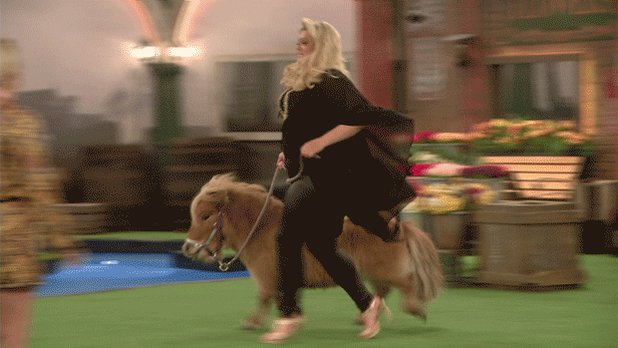 RT if you can't help but think of this gif everytime @Ginuwine sings Pony. 😂 #CBB https://t.co/XP76xs1Tg5