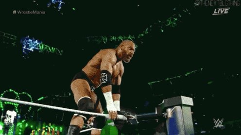 Happy Birthday to the King of Kings as well as a fellow LEO, Triple H!!!!  Enjoy your day!