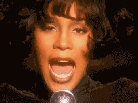 Happy Birthday, Nippy: 18 GIFs That Will Make You Miss Whitney Houston
