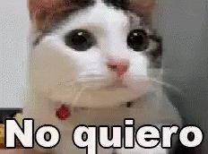 #SeMeEnchinaLaPiel cuando recuerdo que ya casi terminan las vacaciones...