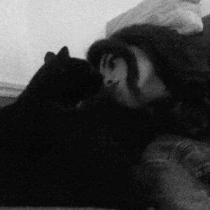 RT if you think black cats deserve love too ❤️ #BlackCatAppreciationDa...