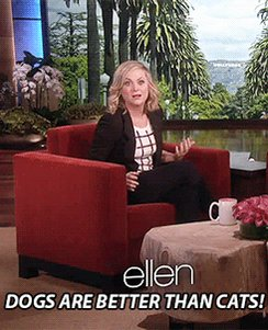 Happy Birthday to the smartest and most precious woman alive, Amy Poehler!