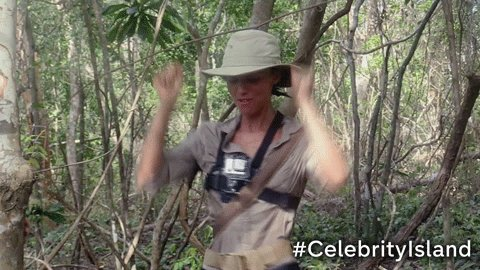 RT @TheIsland: Hey @Lucy_Meck, #CelebrityIsland is on @Channel4 in 1 HOUR! 🎉 https://t.co/NP2ioeAhjz