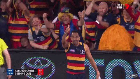 THUMBS UP! 👍 @Adelaide_FC is #AFLGF bound! #AFLCrowsCats #AFLFinals ht...