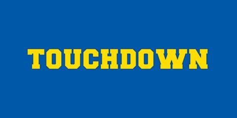 Now a 32-yard TD rush from Mengarelli. Jacks lead 49-14.