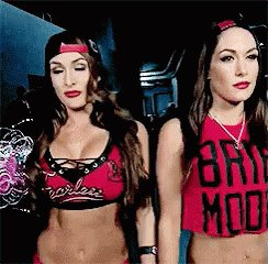 Happy Birthday to The Bella Twins Nikki and Brie