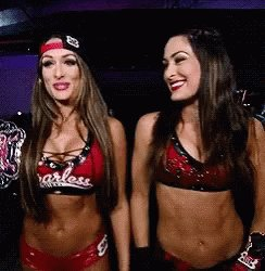 Happy birthday Nikki and brie hope you guys have a great day love the Bella twins xxx