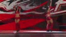 Happy Birthday to the Bella Twins.