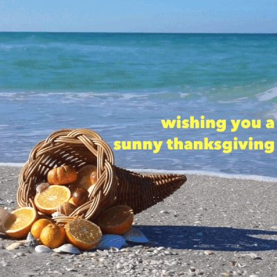 Happy Thanksgiving from Florida! #LoveFL...