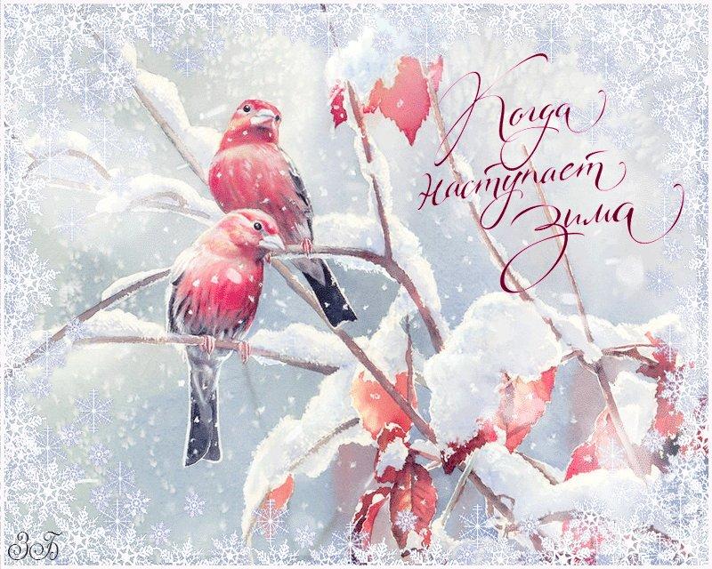 снежное утро картинки и снова здравствуйте