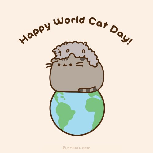 RT @infinite_fluffs: @TwistedDawn Because everyday is #WorldCatDay 💕🐾😺🐱🌏🌎🌍🐾 https://t.co/n2HEHM69K8