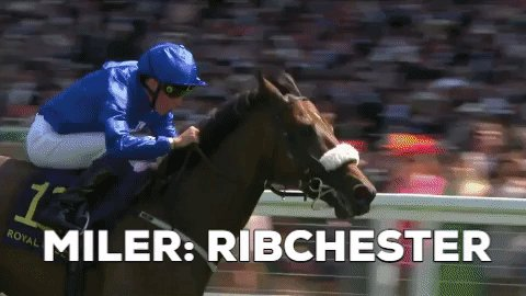 The Godolphin Outstanding Miler Award goes to RIBCHESTER – another Godolphin horse. Congrats to Godolphin and @RichardFahey #ROAAwards