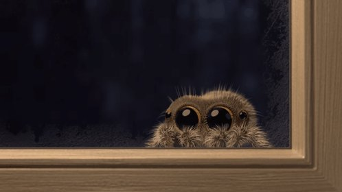 The only spider we will ever call cute 🕷...