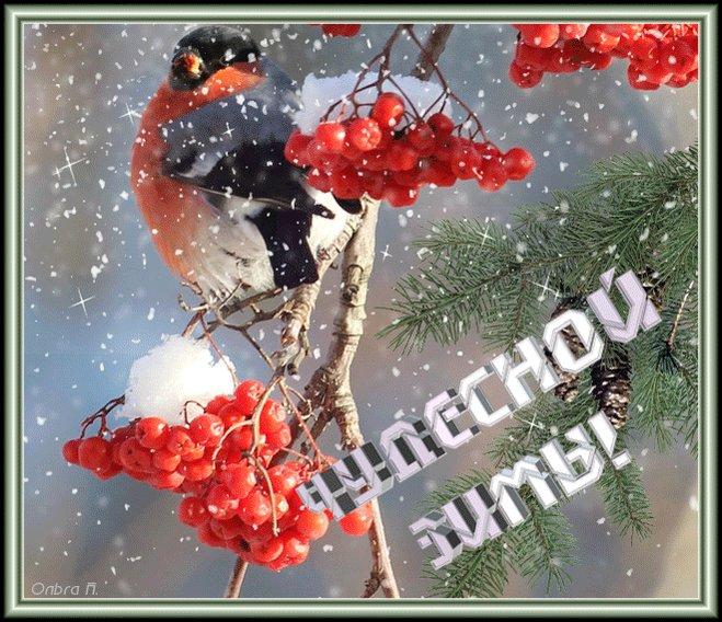 Открытки своими, открытки зимние и отправить