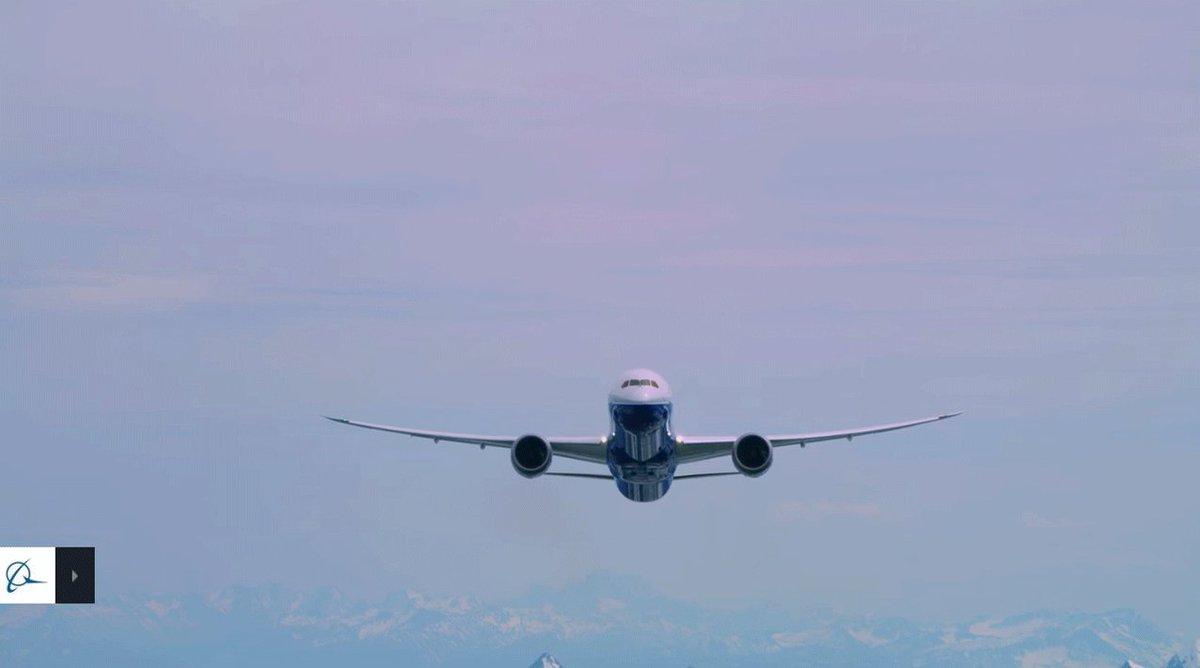 Новый год в небе: как авиакомпании поздравляют пассажиров, фото-5