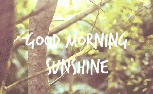 The sun is out the sky is blue. #itliftsmymood #todayisagoodday #positivethinking have a good day everyone https://t.co/K05QYe88qk