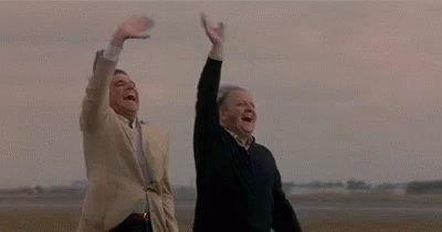 I gemelli Weasley dopo aver fatto lo sch...