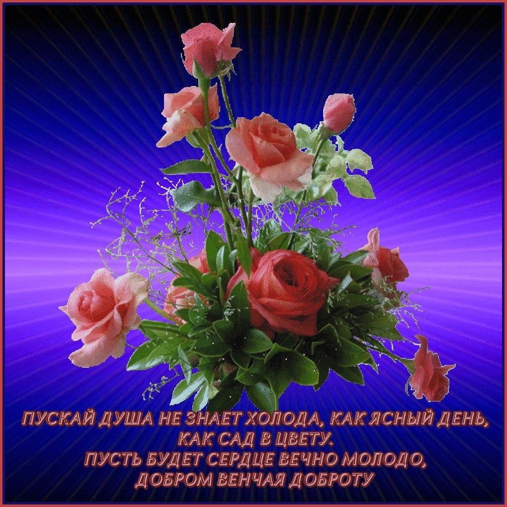 хотя поздравления с днем рождения света радости тепла давайте