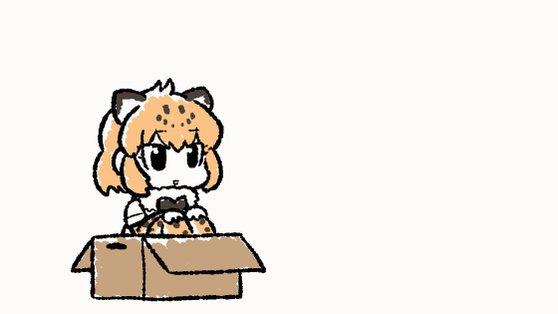 箱に入ってあそぶジャガーさんとあそんであげるがわになってみるコツメカワウソちゃん