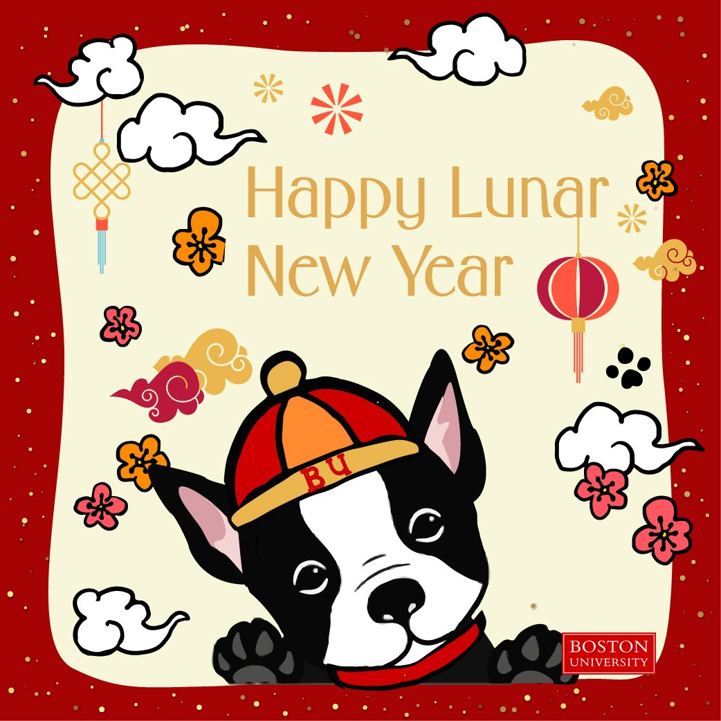 Happy Lunar New Year to all of our Terriers celebrating! The 'Year of the Dog' has a special place in our hearts! ❤️