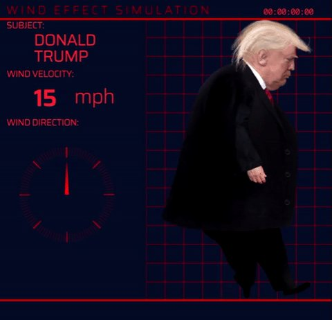 Im releasing the results of our wind effect research, because the public deserves to know all the facts regarding @realDonaldTrumps wretched shit nest head. We were able to produce this information via computer simulation. Round 1: Partial instability when facing mild wind.