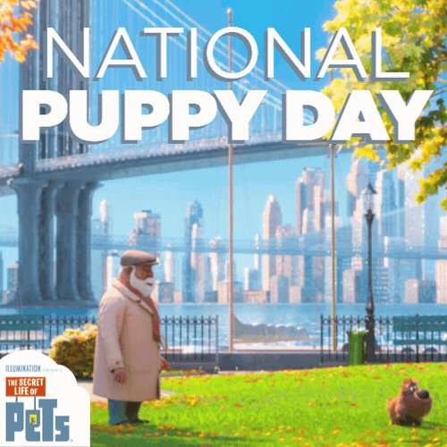 RT @PetsMovie: Happy #NationalPuppyDay to all pups big and small.🐶#TheSecretLifeofPets https://t.co/VadS2b1gqG